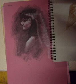 Rosa (5)